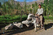 Tadżykistan - na osiołku.