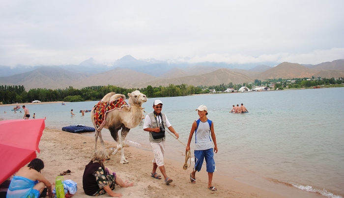 A walk with a camel by the lake Issyk-Köl.
