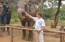 Tajlandia - karmię słonia.