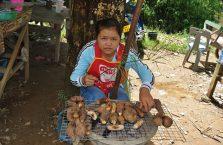 Laos - dziewczyna i jej stragan.