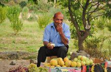 Armenia - mężczyzna na bazarze owocowym.