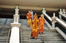 Singapur - mnisi.