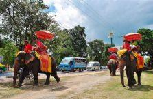 Tajlandia - słoń wożący turystów.