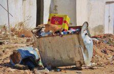 Jordania - kot szukający jedzenia w śmietniku.