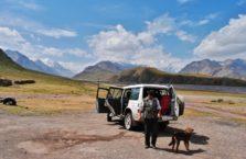 Kirgistan - wielbłąd nad jeziorem Issyk - Kol.