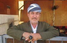 Iraqi Kurdistan - Kurdish driver.