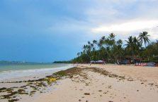 Alona beach Panglao (2)