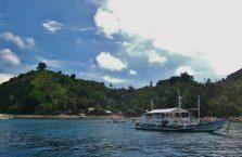 Apo island(1)