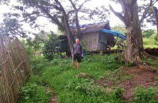Apo island(14)