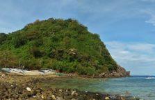Apo island(15)