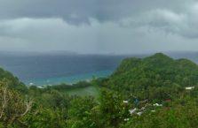 Apo island(19)
