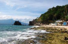 Apo island(4)