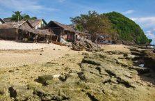 Apo island(5)