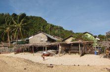 Apo island(6)