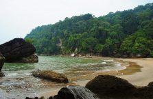 Bako National Park- Borneo (15)