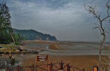 Bako National Park- Borneo (26)