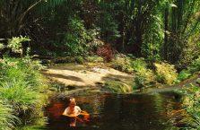Bako National Park- Borneo (34)