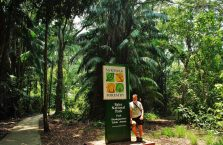 Bako National Park- Borneo (38)
