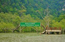 Bako National Park- Borneo (8)