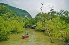 Bako National Park- Borneo (9)