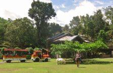 Bohol trip (7)