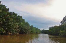 Brunei - Temburong (1)