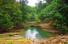 Can Umantad waterfall Bohol (11)