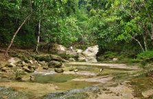 Can Umantad waterfall Bohol (4)