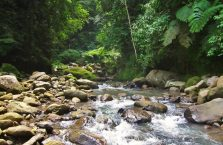 Casaroro Falls Negros (7)