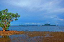 Clara beach Guimaras (9)