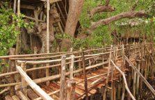 Guiwanon Park (4)