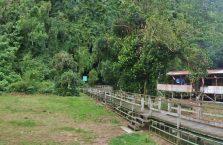 Gumantong cave Borneo Malaysia(12)