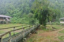 Gumantong cave Borneo Malaysia(13)