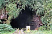Gumantong cave Borneo Malaysia(2)