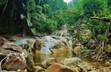 Gunung Gading Borneo (3)
