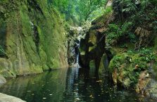 Gunung Gading Borneo (8)