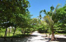 Kalanggaman island (3)