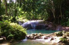 Kawasan falls Siquijor (3)