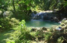 Kawasan falls Siquijor (7)