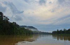Kinabatangan Borneo (16)