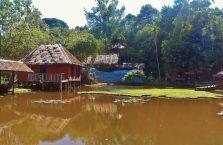 Kota Kinabalu Borneo (87)
