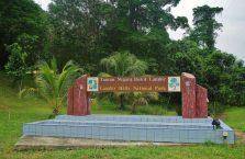 Lambir Hills Borneo Malaysia(1)