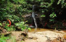 Lambir Hills Borneo Malaysia(12)
