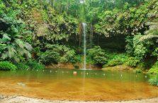 Lambir Hills Borneo Malaysia(6)