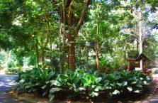 Lok Kawi Wildlife Park Borneo (19)