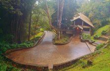 Mount Kinabalu Borneo (36)