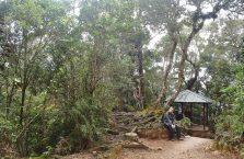 Mount Kinabalu Borneo (46)