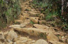 Mount Kinabalu Borneo (9)