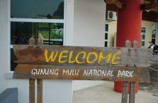 Mulu Park Borneo Malaysia (2)