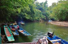 Mulu Park Borneo Malaysia (24)